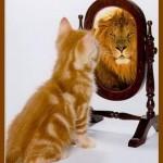 Trastorno Narcisista de la Personalidad, Tratamiento Psicológico